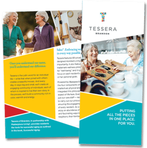 Brochure on Assisted Living Nursing Care near Tampa FL